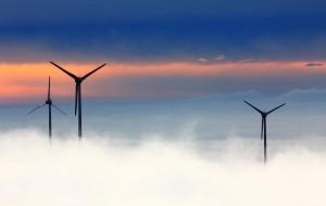 ecologia-energia
